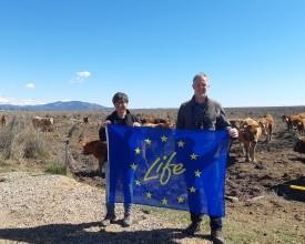 Life Networking tapasztalatok Spanyolországban
